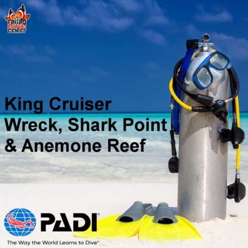 King Cruiser Wreck, Shark Point & Anemone Reef