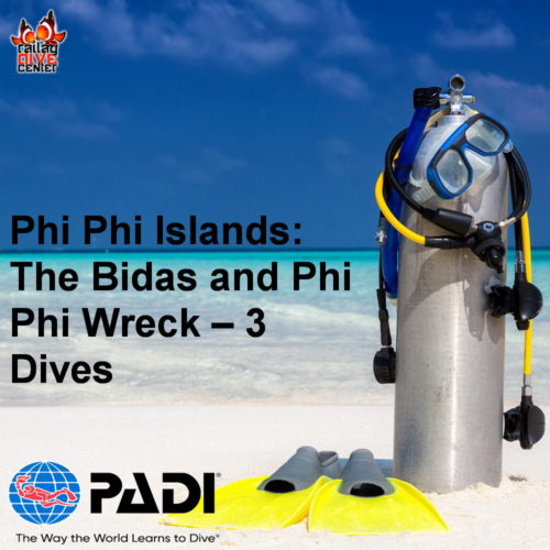 The Bidas and Phi Phi Wreck – 3 Dives